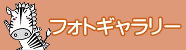 天川幼稚園 フォトギャラリー